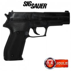 Sig Sauer P226 Noir Training