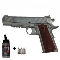Pack Colt 1911 Rail Gun Series Stainless Culasse Métal